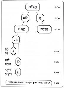 גרף שלבי השיטה